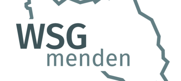 csm_WSG-Logo_2016_513c46d60b